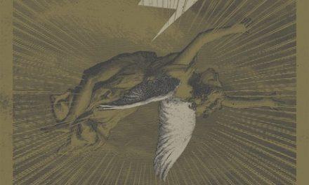 Pájaro – He Matado al Ángel